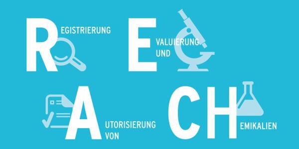 REACH Legislation 2020